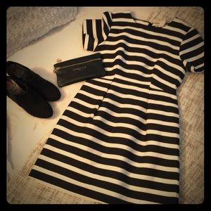 H&M Black and  Cream Dress